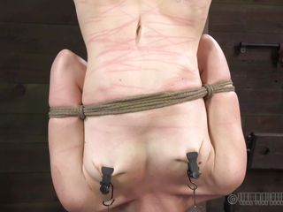 hanged cutie whipped in the balance the brush nuisance turns red