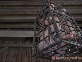 caged making love thrall gives head