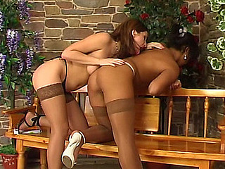 Lesbian dolls in silky nylons enjoying their feel in lezzie intercourse