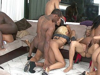 black dilettante swinger party three